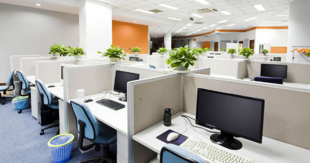 Green-offices-cubicles